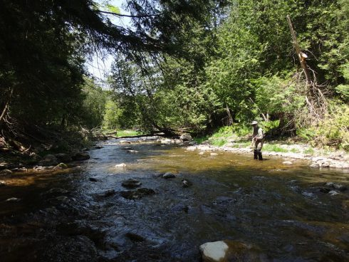 We guide many secluded creeks and rivers