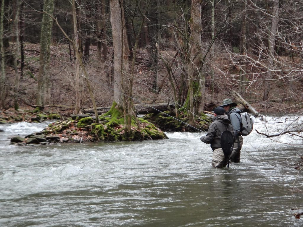 Learn to fly fishing in Ontario