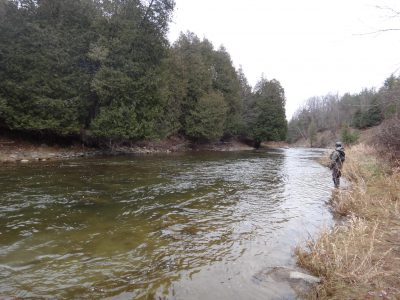 The Bighead River is one of Ontario's best trout and steelhead rivers
