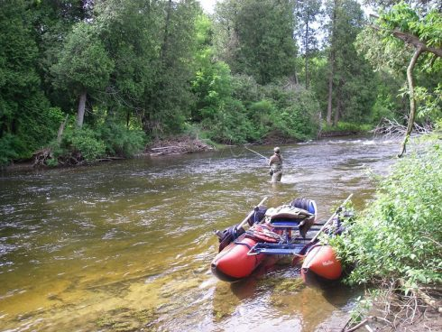 Fly fishing for trout on the Saugeen river