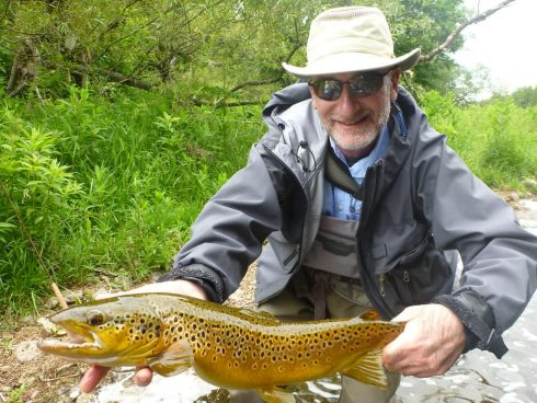 Big Brown trout caught with advanced nymphing tactics