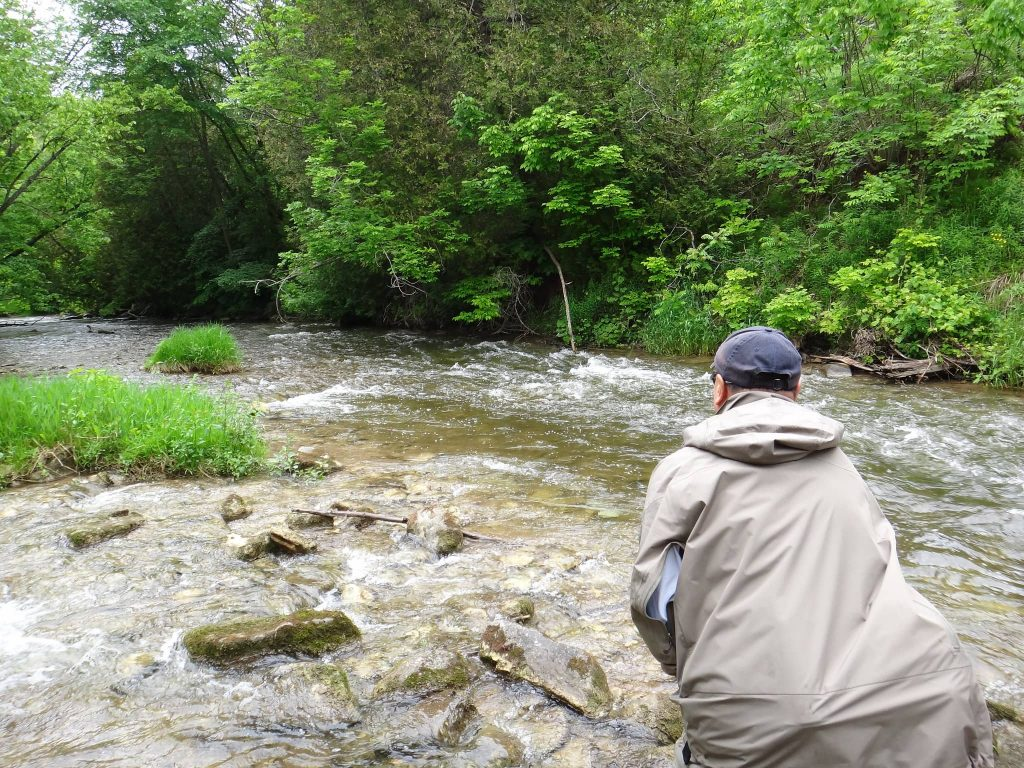 Walk and wade trout trips in Ontario