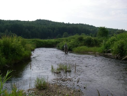 Fishing the Pine River