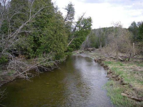 Fishing the Boyne River