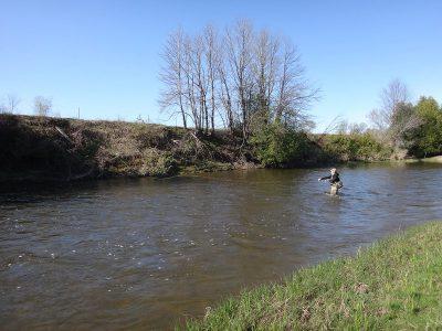 Spey Fishing For Ontario Steelhead