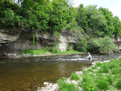 Advanced fly fishing lessons