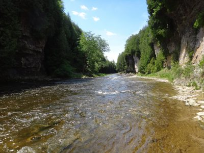 The upper grand river is one of Ontario's best trout and steelhead rivers