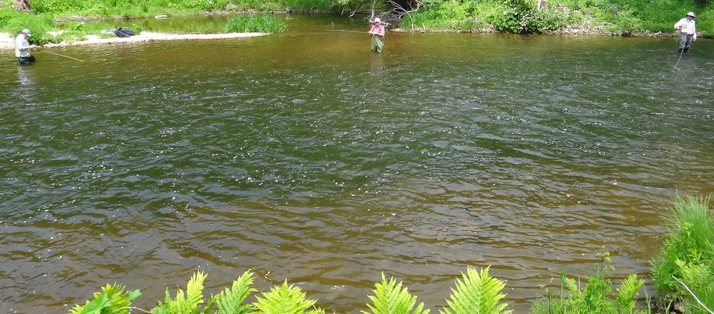 Streamer Fishing Tactics for Ontario Trout