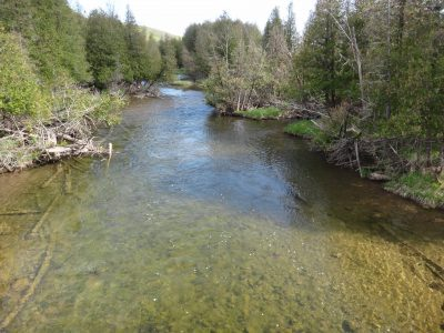 The Beaver river is one of Ontario's best trout and steelhead rivers