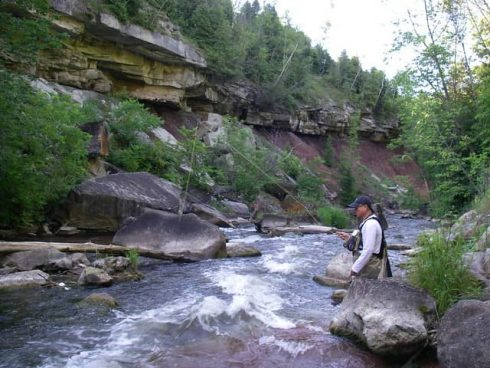 Fly fishing the upper Credit River