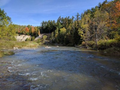 The Nottawasaga River is one of Ontario's best trout and steelhead rivers