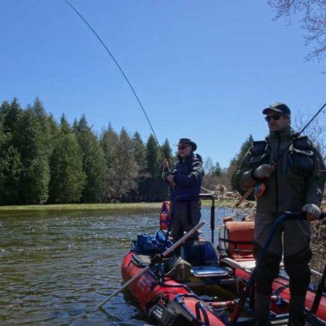 Tips for Float fishing for steelhead